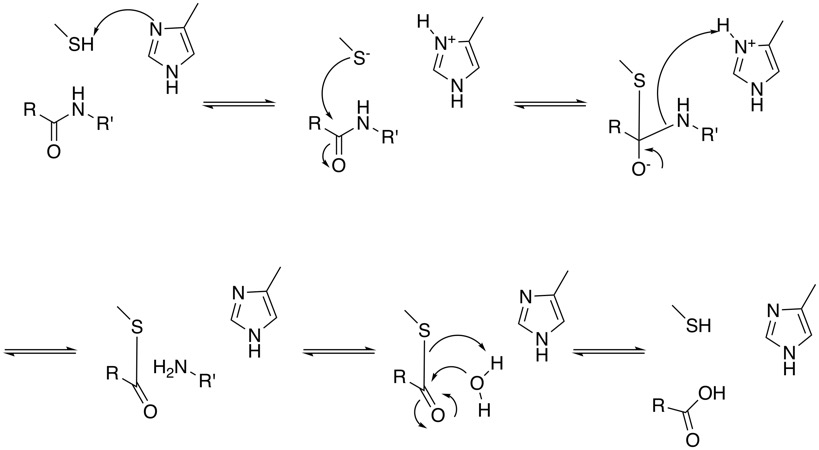 Cysteine Protease Inhibitors Cambridge Medchem Consulting